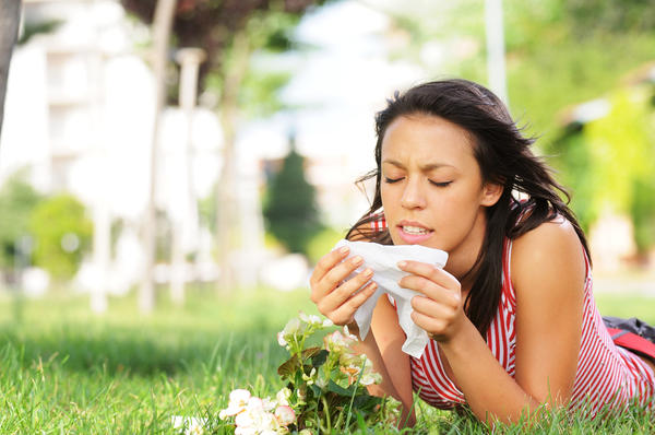 Home Remedies to Treat Seasonal Allergies
