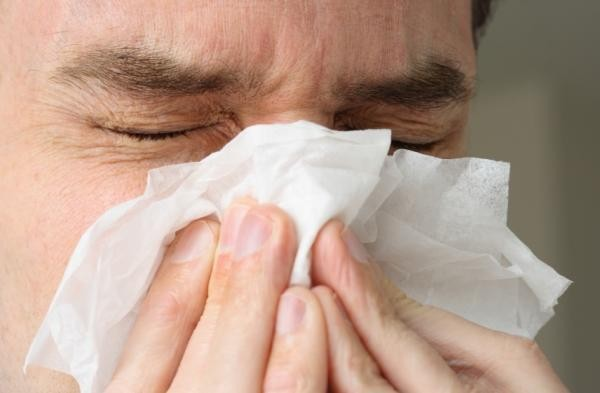 Herbal Remedies to Cure Sinus Infection