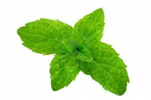 Mint-300x200 9 Herbs and Spices with Nutritional Superpowers