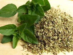 Oregano-300x225 9 Herbs and Spices with Nutritional Superpowers