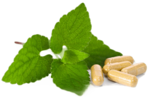 Herbalism-treatment-300x200 Herbalism is the best process of treatment