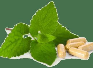 Herbalism treatment