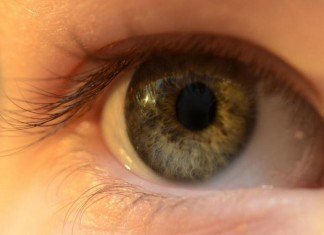 Perfect Vision - 4 Things Your Eyes Tell You About Your Health