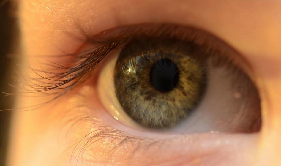 Perfect-Vision-4-Things-Your-Eyes-Tell-You-About-Your-Health Perfect Vision: 4 Things Your Eyes Say About Your Health