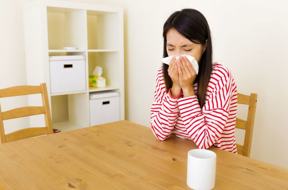 6-Common-Sources-Of-Allergens-In-Your-Home-And-How-To-Get-Rid-Of-Them Six Common Sources Of Allergens In Your Home, And How To Get Rid Of Them