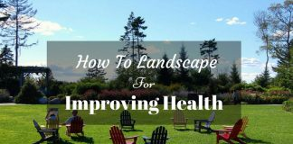 how-to-landscape-for-improving-health