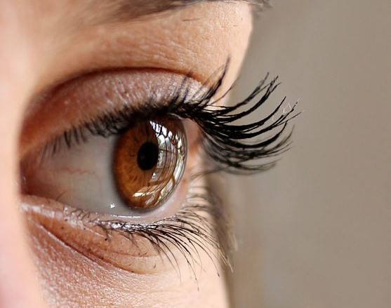 Windows-to-the-Body-What-Your-Eyes-Can-Say-About-Your-Health-1 Windows to the Body: What Your Eyes Can Say About Your Health