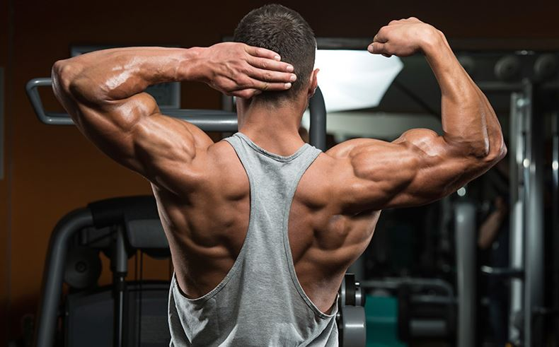 Pumping-Up-7-Healthy-Tips-for-Body-Building Pumping Up: 7 Healthy Tips for Body Building