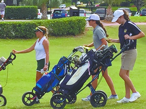 golf-push-cart Using Golf Push Cart: Why It is Good for your Health
