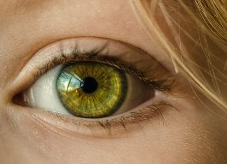 Dry Eyes - 5 Vision-Improving Foods to Add to Your Diet