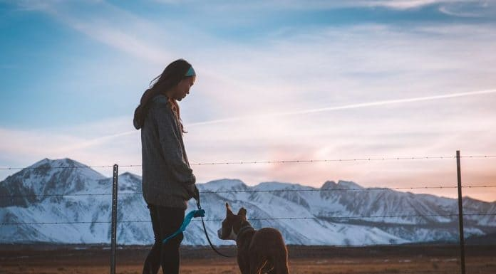 5 Suggestions for Better Emotional Health