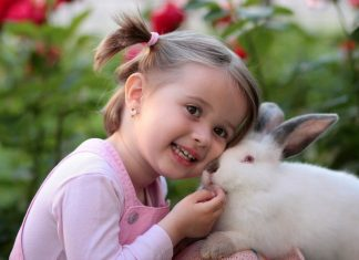 girl-rabbit-friendship-love